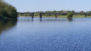 The Lord Na Mona light railway bridge at Lanesboro on the river Shannon