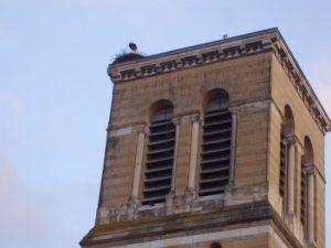 The Digoin stork